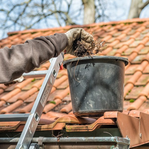 Man on Ladder Clearing out gutters